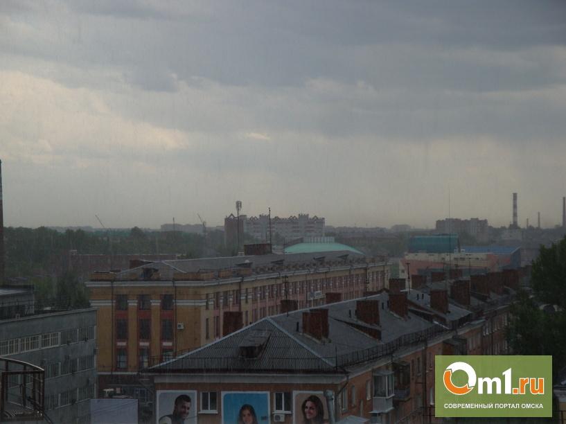 В Омске прошел первый летний ливень (ФОТО+ВИДЕО)
