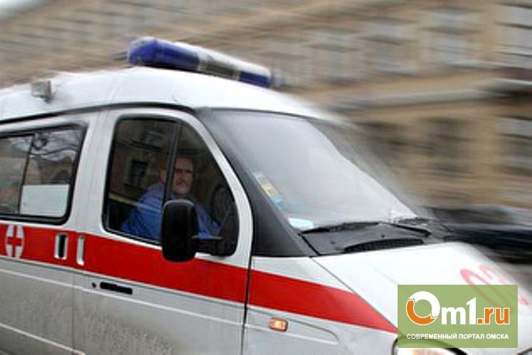 Под Омском в ДТП с КамАЗом ранен 10-летний ребенок