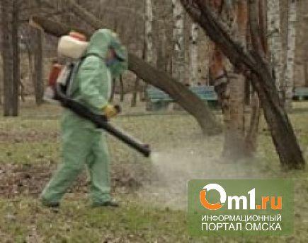В Омске от клещей начали обрабатывать парки