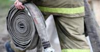 В Омской области на трассе полностью сгорел автомобиль