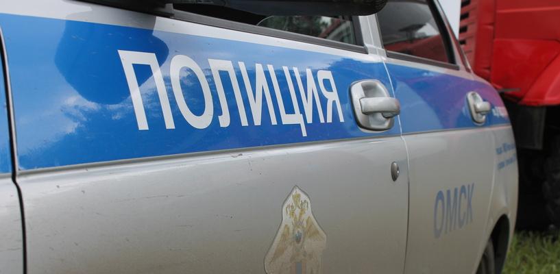 За полгода в Омске зарегистрировано более 8 000 преступлений