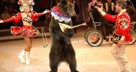 Омичи выступили против дрессировки животных для цирка
