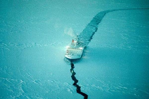 В отпуск по льду: министр образования Ливанов отправится на Северный полюс