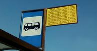 В Омске автобус №82 сбил пешехода