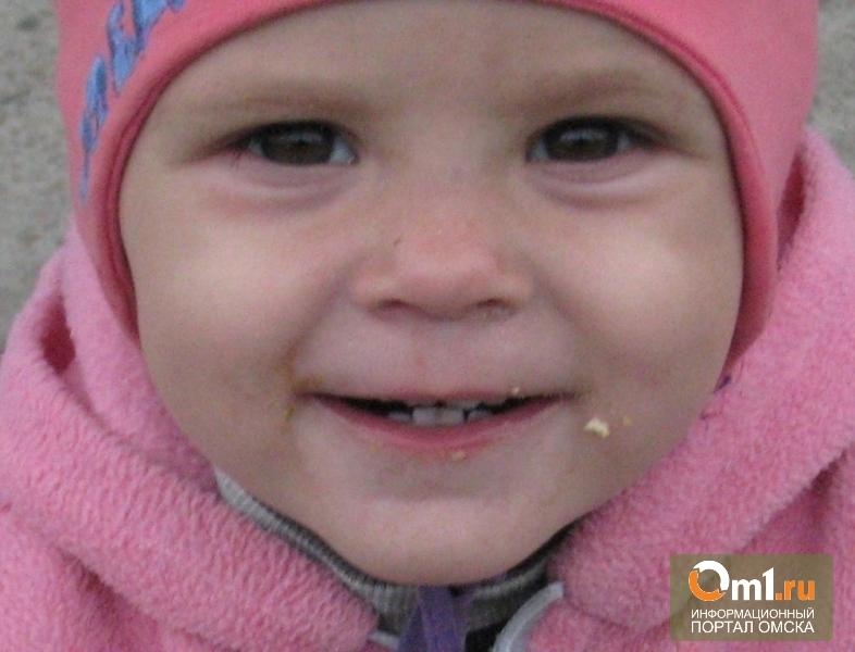 Полиция ищет пропавшую 1,5-годовалую дочь омички, которую раздели и изрезали в лесу
