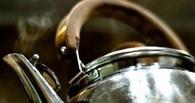 В Омской области мать опрокинула на 11-летнюю дочь чайник с кипятком