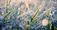Недолго радовались: в Омске ожидается резкое похолодание вплоть до выпадения снега