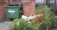 Из Омска начали вывозить новогодний мусор и непроданные ели