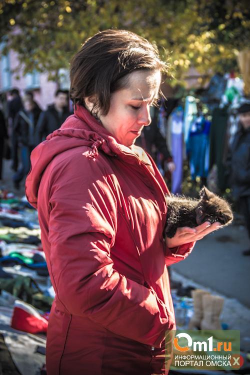В Омске продавцы животных не хотят покидать «Хитрый рынок»