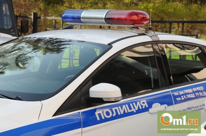 В Омской области возбуждено дело из-за гибели ребенка в ДТП
