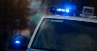 Погоня со стрельбой: омская полиция ловила пьяного водителя (видео)