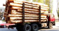 В Омской области будут судить фирму, нарубившей леса на 90 млн рублей