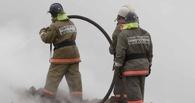 В Омске во дворе дома сгорела припаркованная иномарка