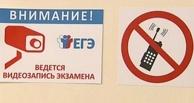 С ЕГЭ по обществознанию в Омской области выгнали двоих выпускников