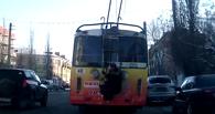 Супер-заяц: омич прокатился по Нефтяникам, зацепившись за троллейбус