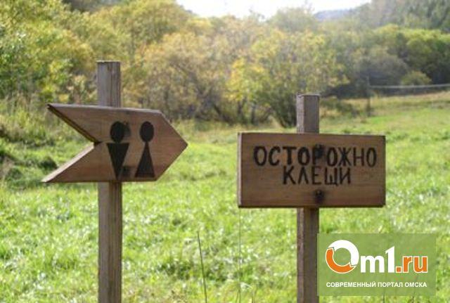 Омские клещи уже укусили 2010 человек