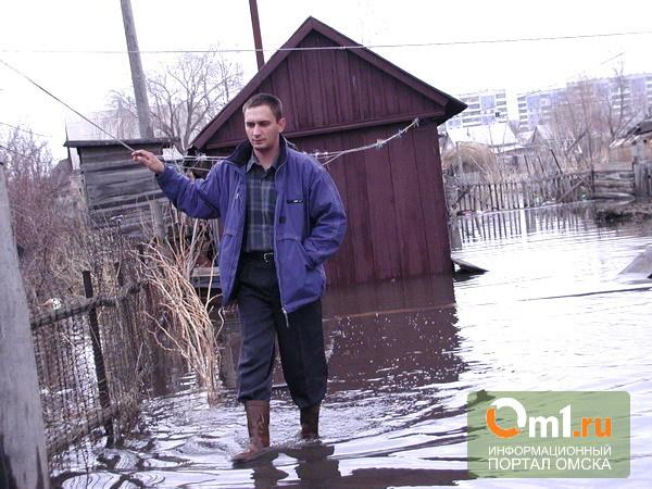Снег в Омске начнет активно таять уже на следующей неделе