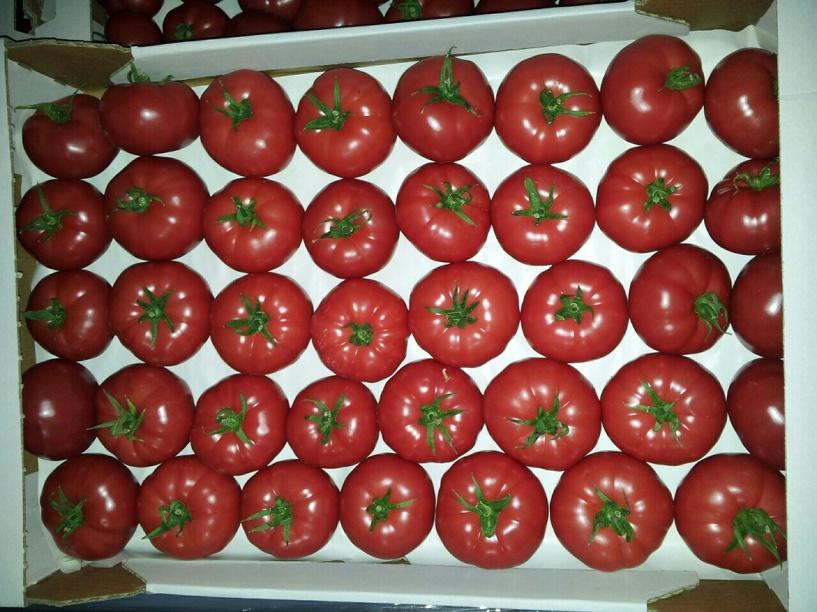 В Омске задержали 20 тонн польских помидоров