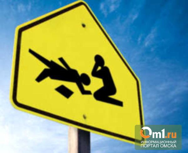 В Омской области водитель насмерть сбил пешехода