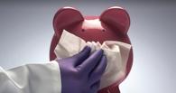Число зараженных свиным гриппом омичей достигло 19 человек