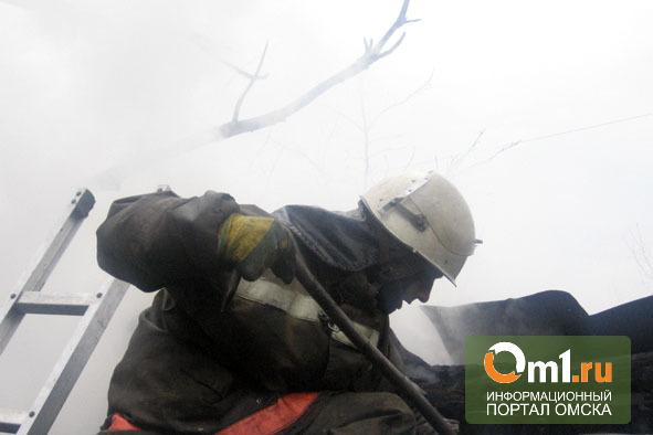Житель Омской области не успел спасти соседа из горевшего дома