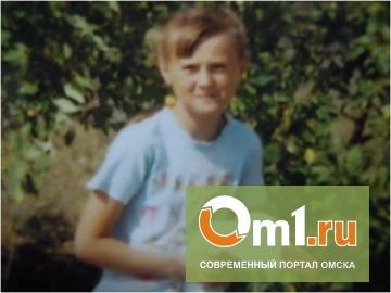 В Омской области 11-летняя девочка ушла из дома из-за того, что там пили