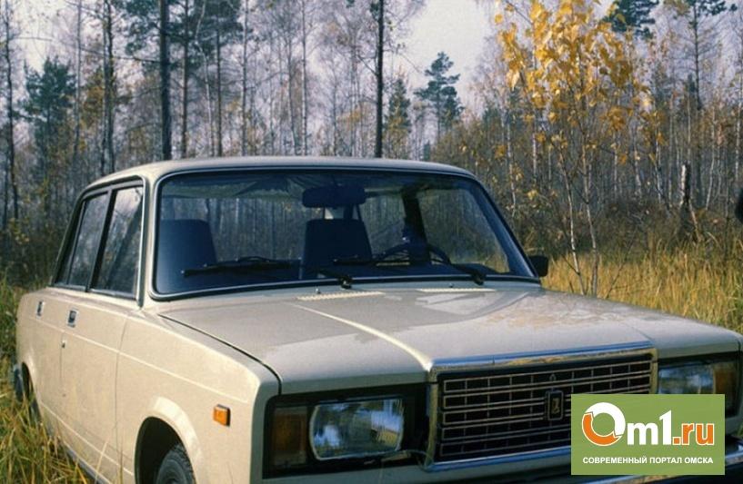 В Омской области нашли тело самоубийцы