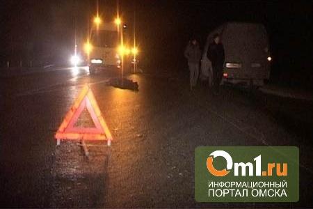 На трассе Тюмень-Омск житель Риги на фуре сбил пешехода