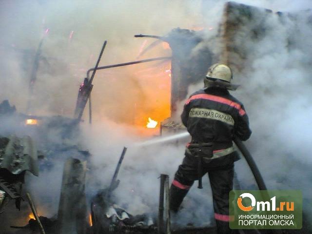 В Омской области сгорел и рухнул магазин