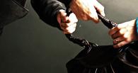 Двое омичей отобрали у женщины сумку, но были задержаны полицейскими