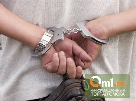 Омича, изнасиловавшего 7-летнюю девочку, экстрадируют из Франции