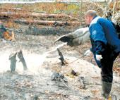 НЛО рухнул в уральских лесах