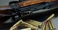 Омские полицейские изъяли около 300 единиц оружия у граждан