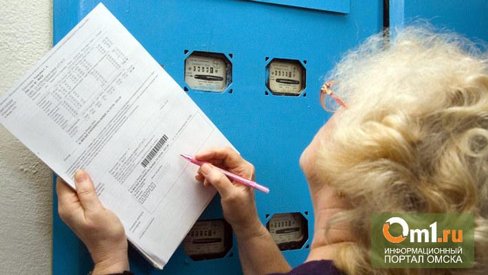 РЭК посчитает омичам норму потребления электроэнергии на 2014 год