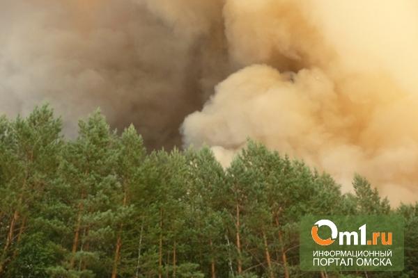 Власти Омской области намерены ввести особый противопожарный режим