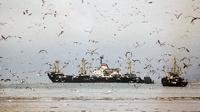 Пограничники КНДР обстреляли российскую шхуну в Японском море