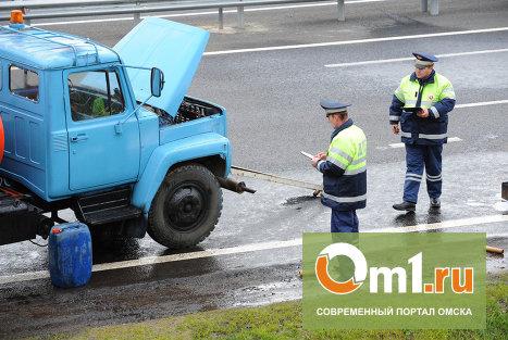 На дороге под Омском «Жигули» протаранили ЗИЛ: пострадала годовалая девочка