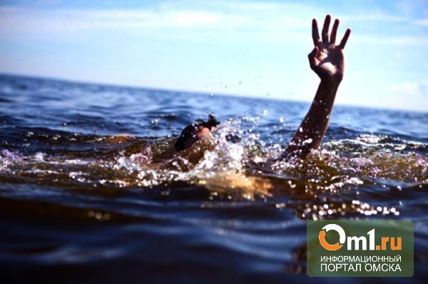 В Омске у «Зеленого острова» едва не утонула 15-летняя школьница