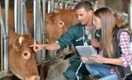 Омская область получит 23 млн рублей на сельскохозяйственную перепись населения