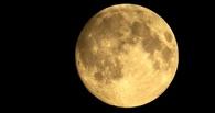 База все-таки будет: Роскосмос поселит на Луне до 12 человек