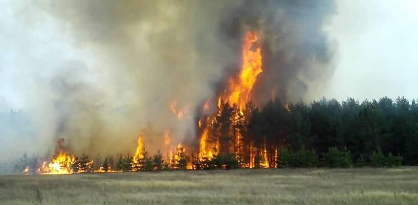 Омичам вновь напомнили, что во время уик-энда не стоит разжигать костры