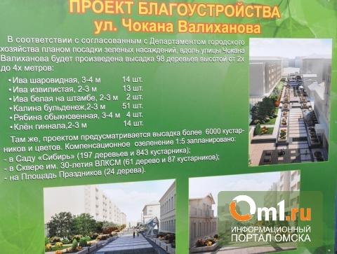 Реконструкцию улицы Валиханова в Омске могут не успеть закончить к сроку