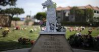 Омичи устроили в городе более 30 нелегальных кладбищ домашних животных