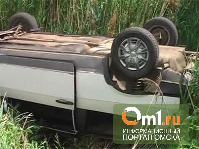 На дороге «Омск - Черлак» Opel Vectra вылетел в кювет: водитель погиб