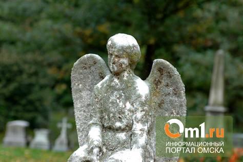 Рынок скорби: кто наведет порядок на омских кладбищах?