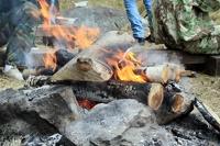 Летняя прогулка по лесу может обойтись россиянам в тысячу рублей