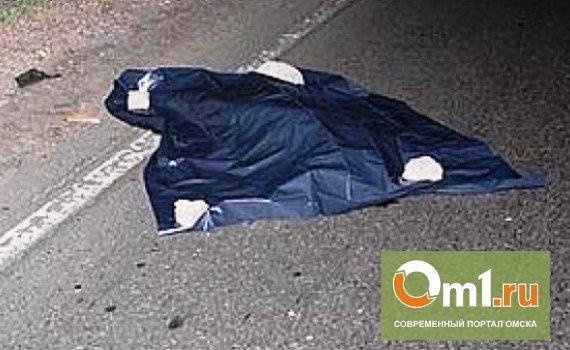 В Омске насмерть сбили 23-летнюю девушку