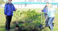 Сотрудники омского нефтезавода заложили на предприятии треугольный сад из сирени и спирей