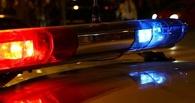 Ночью в Омском районе насмерть сбили пешехода