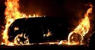 Съездил в гости к другу: у омича горел Ford